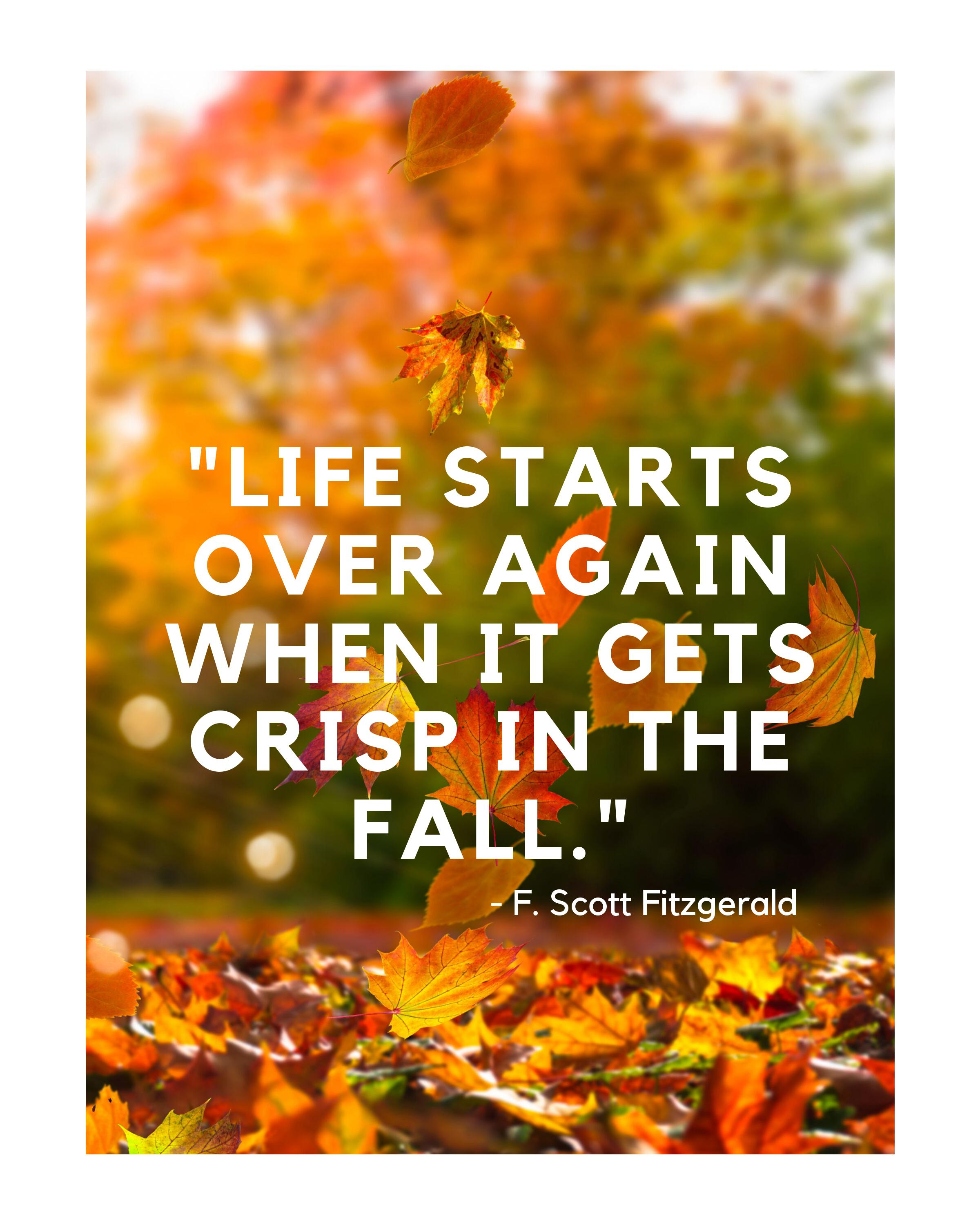 Inspirational Quote About Fall